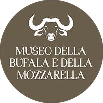 museo della mozzarella battipaglia